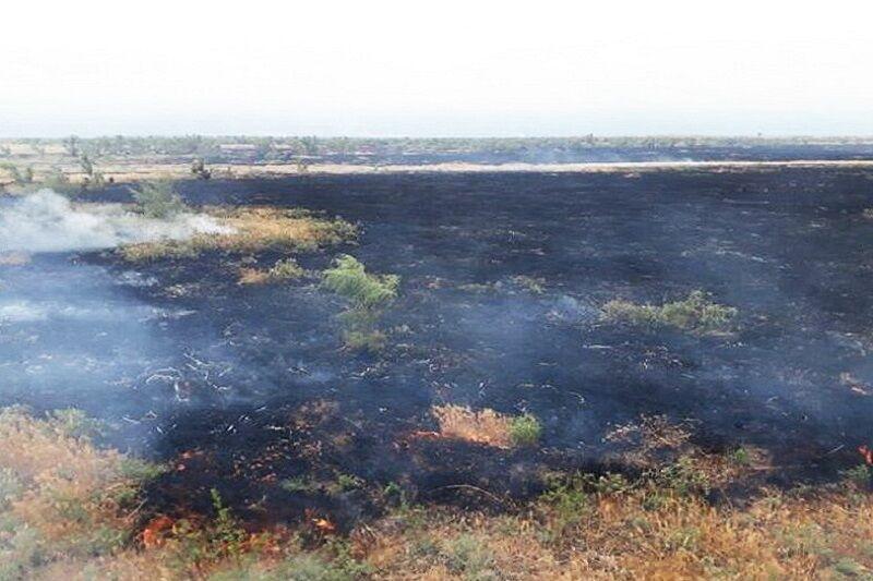 خبرنگاران آتش سوزی در مراتع کاشان 90 درصد کاهش یافت