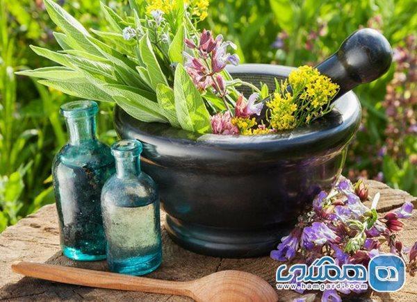7 باور اشتباه درباره گیاهان دارویی و طب سنتی در همه گیری کرونا