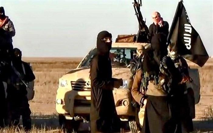 بازداشت یک مادر و دختر داعشی که در قتل یک مقام محلی عراق دست داشتند